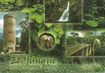 El Yunque, Post Cards of Puerto Rico Puerto Rico