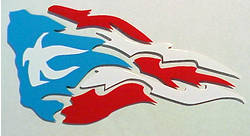 Puerto Rican Flag Special Design Rico